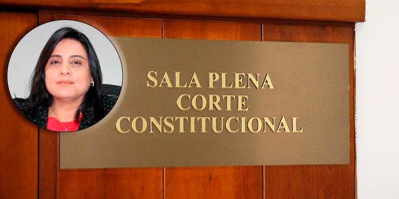 Paola Andrea Meneses, nueva magistrada de la Corte Constitucional (Humberto Pinto)